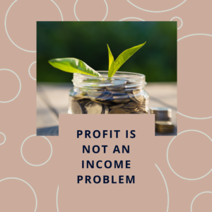 Profit is not an Income Problem