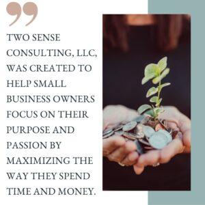 two sense consulting for virtual CFO services