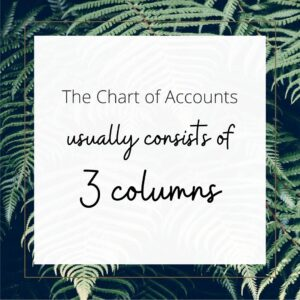what columns are in a chart of accounts